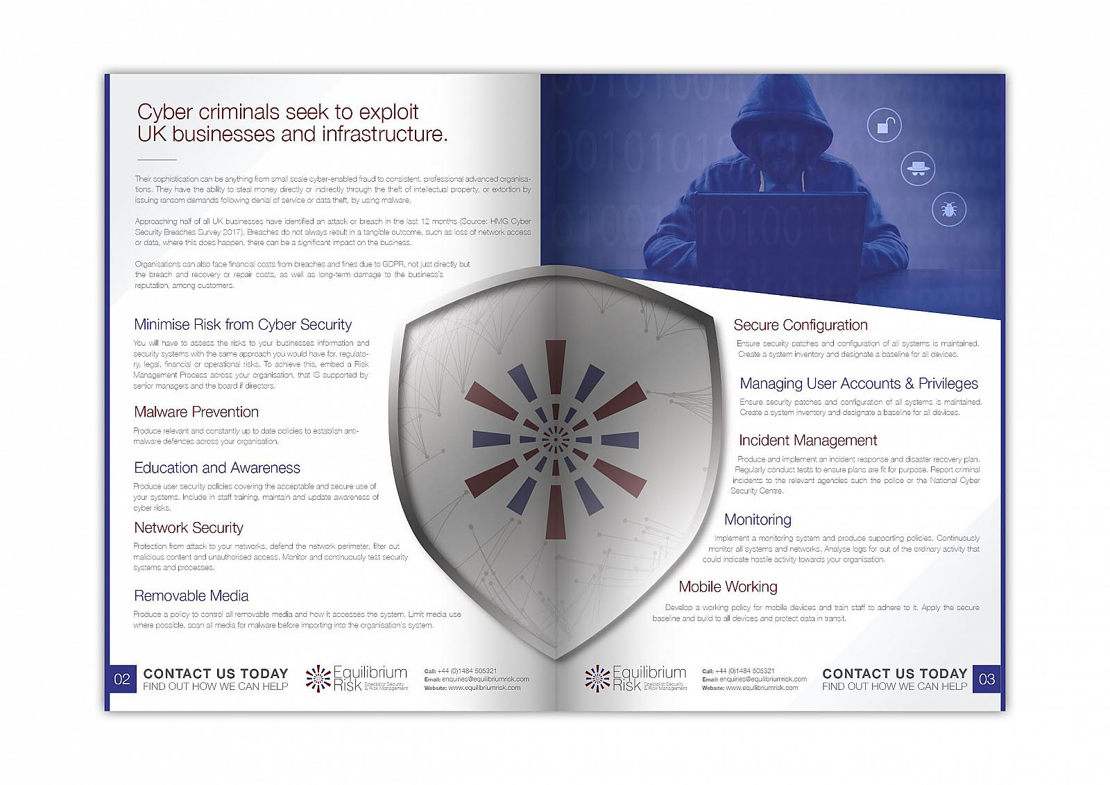 Equilibrium Risk - Cyber Security Flyer
