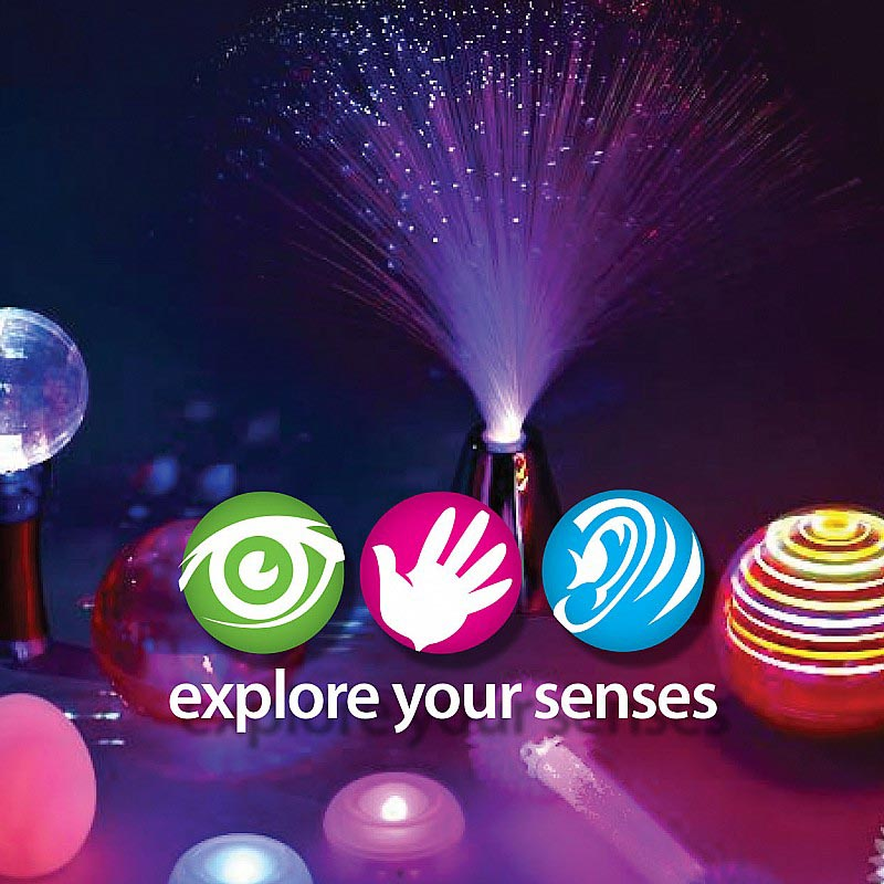 Explore Your Senses
